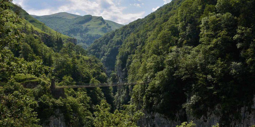Pyreneeen natuur